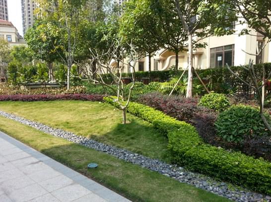 小型精致之园林绿化定位为高档宅旁小游园