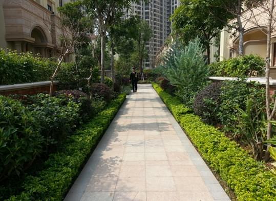 笔直园路之园林绿化模式可定位为高档规则绿地