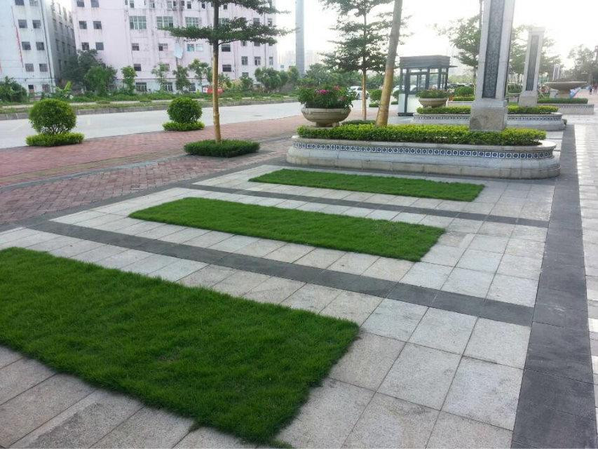 深圳园林景观设计|深圳园林景观|园林景观设计-中艺
