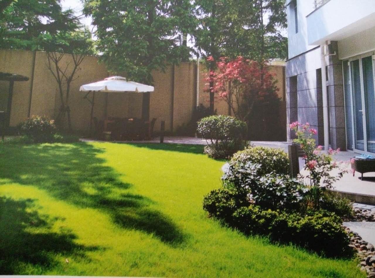 深圳别墅庭院设计植物的选择风格