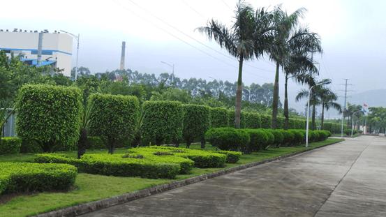 祝贺京铁科技工业园绿化养护签订中艺源园林