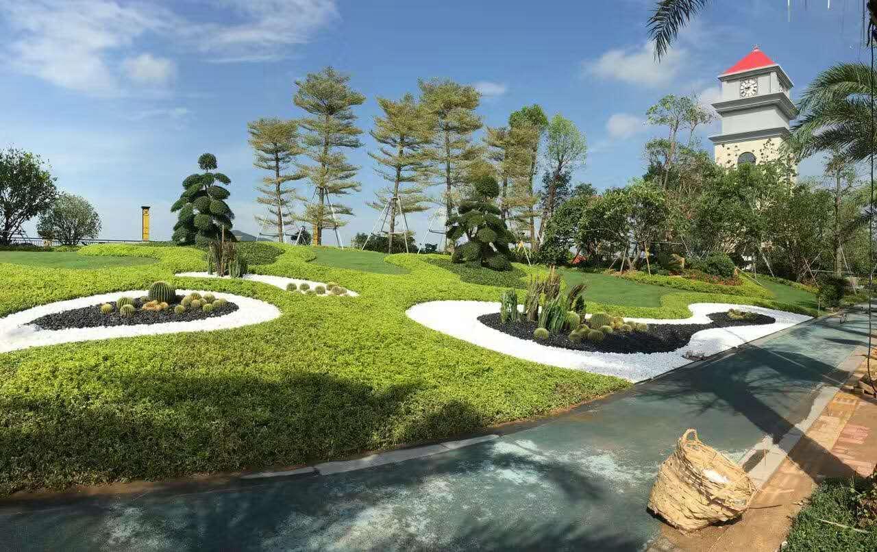 热烈祝贺中艺源园林与阳光圣菲小区园林绿化施工