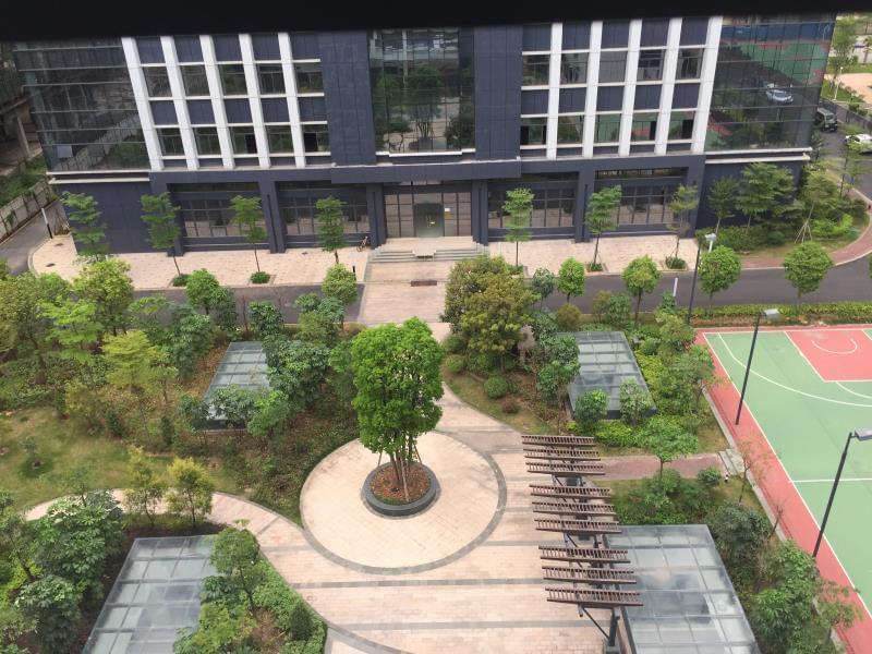 热烈祝贺我司与深圳华意隆签订厂区园林绿化工程