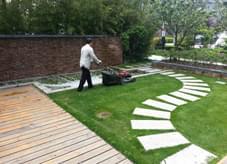 绿化养护中除草去杂