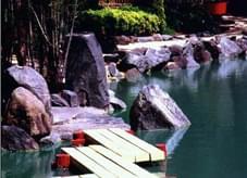 """绿色、氧气、阳光""""营造""""自然、健康、和谐""""的园艺小品"""