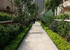 笔直园路之园林绿化模式塑造高端规则绿地