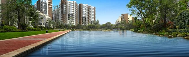 水景园林绿化设计,给您绿色的心情