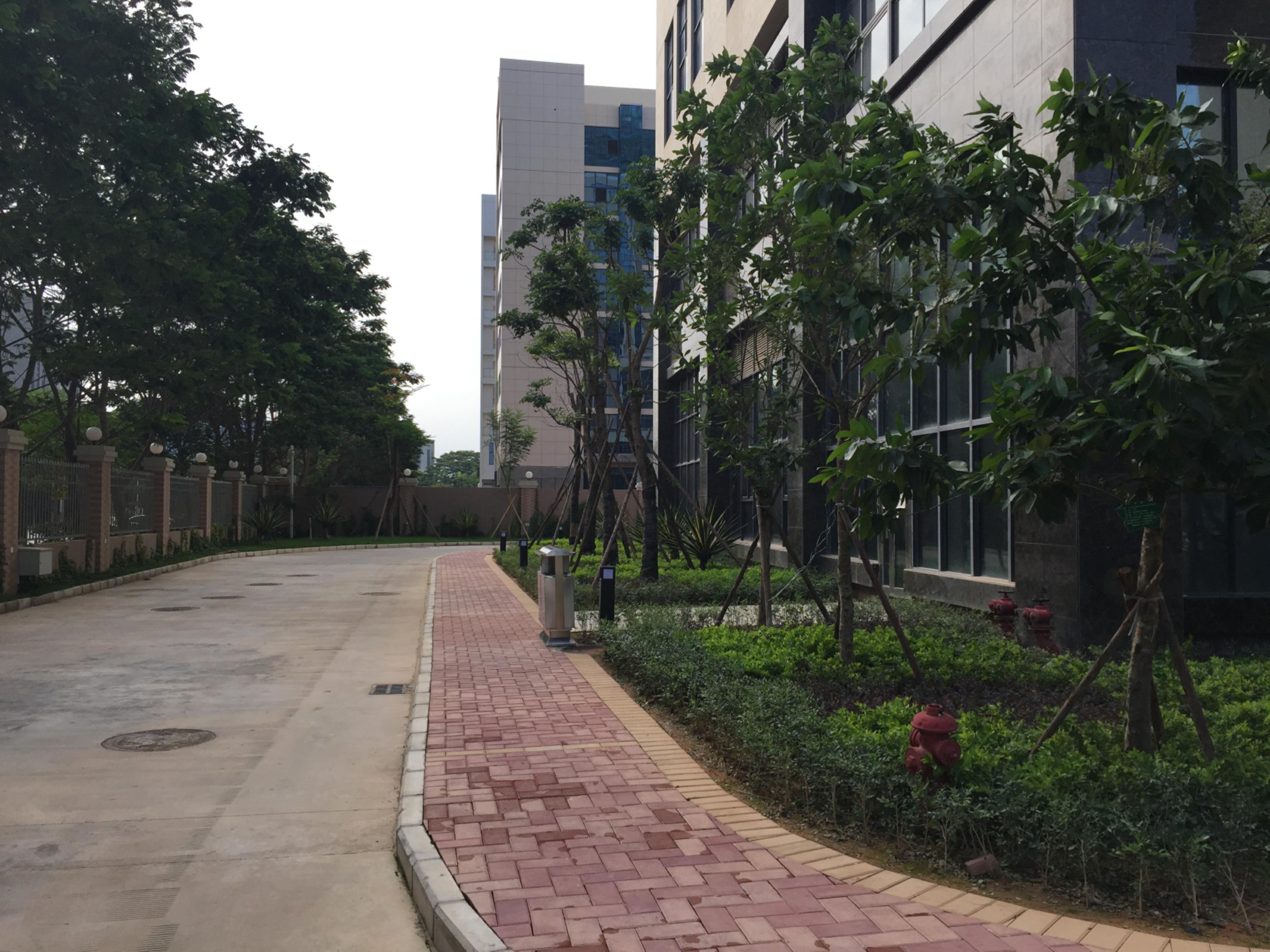 深圳市新产业生物医学工程工业区绿化