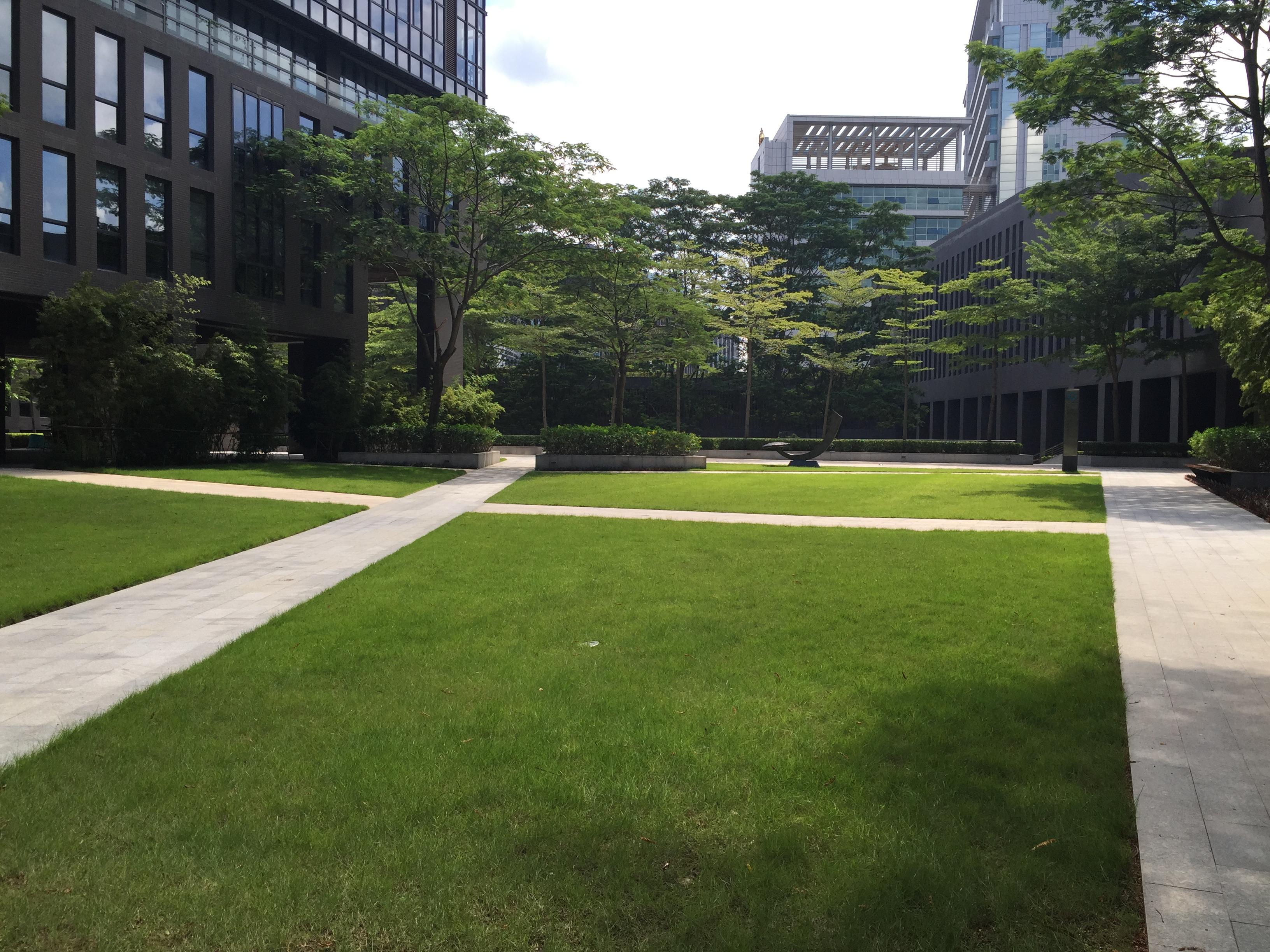 深圳市富泰和办公楼景观